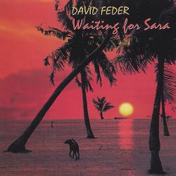 David Feder - Waiting for Sara