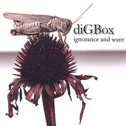 Digbox - Ignorance and Want