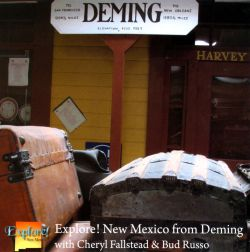 Cheryl Fallstead / Bud Russo - Explore! New Mexico From Deming