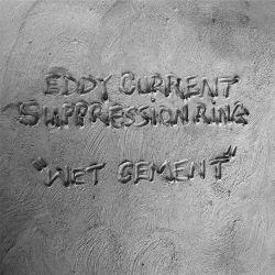 Eddy Current Suppression Ring - Wet Cement