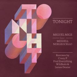 Miguel Migs - Tonight