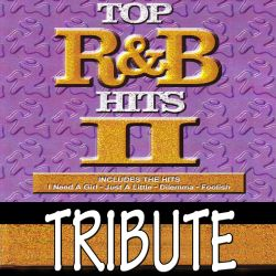 Dubble Trubble - Dubble Trubble Tribute To Top R&B Hits, Vol. 2