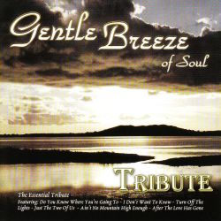 Dubble Trubble - Dubble Trubble Tribute: Gentle Breeze of Soul