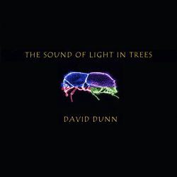 David Dunn - The  Sound of Light in Trees