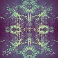 Pixie Carnation - Keep It Coming