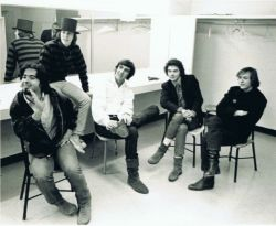 The 13th Floor Elevators