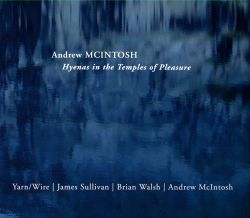 Andrew McIntosh / James Sullivan / Brian Walsh - Andrew McIntosh: Hyenas in the Temples of Pleasure