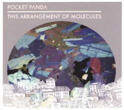 Pocket Panda - This Arrangement Of Molecules