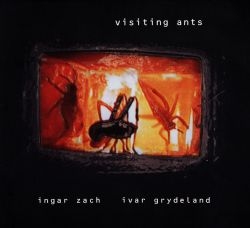 Visiting Ants