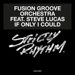 Fusion Groove Orchestra / Steve Lucas - If Only I Could