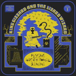 King Gizzard & the Lizard Wizard - Rattlesnake