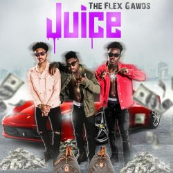 The Flex Gawds - Juice