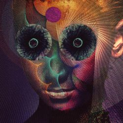 The Insulated World