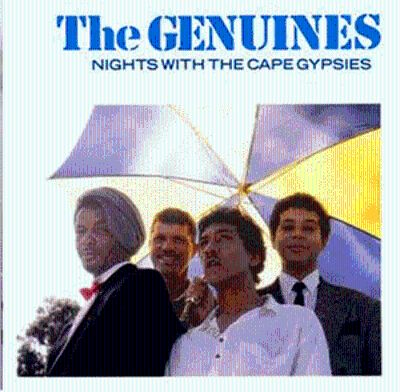Nights with the Cape Gyps