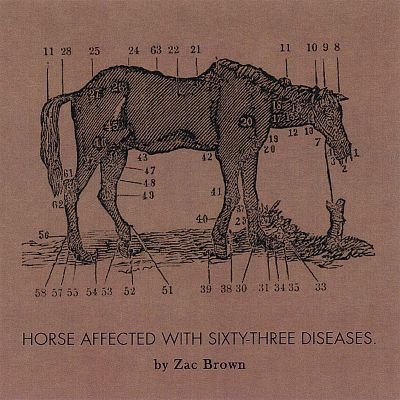 Ride the Sick Horse