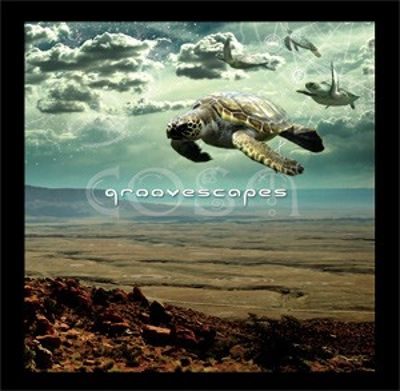 Groovescapes