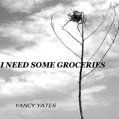 I Need Some Groceries