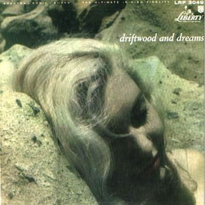 Driftwood and Dreams