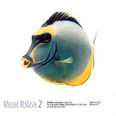 Real Ibiza, Vol. 2 [Single Disc]
