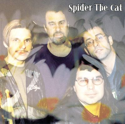 Spider the Cat