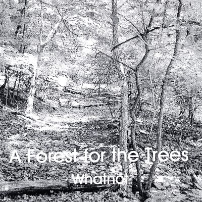 A Forest for the Trees
