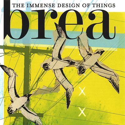 The Immense Design of Things