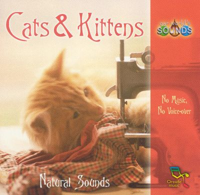 Our World's Sounds: Cats & Kittens