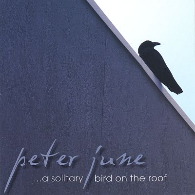 ...A Solitary Bird on the Roof