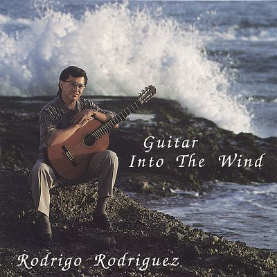 Guitar into the Wind