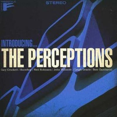 Introducing the Perceptions