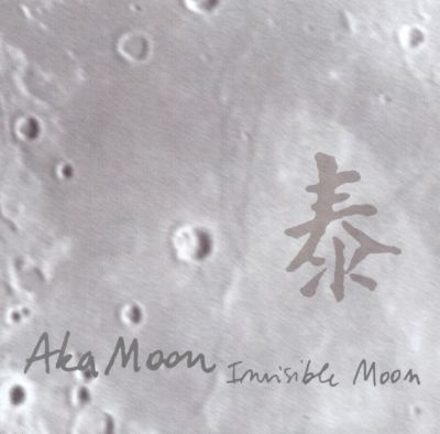 Invisible Moon