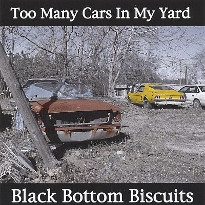 Too Many Cars in My Yard