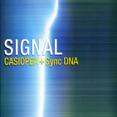 Casiopea Album Discography Allmusic