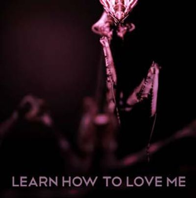 Learn How To Love Me