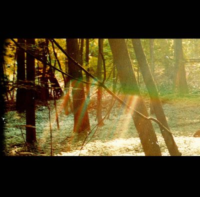 Camp - Childish Gambino | Songs, Reviews, Credits, Awards ...