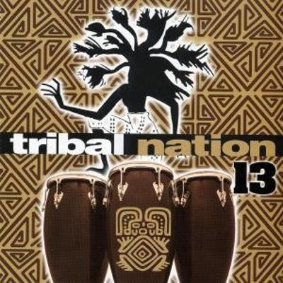 Tribal Nation, Vol. 13