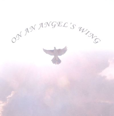 On an Angel's Wing