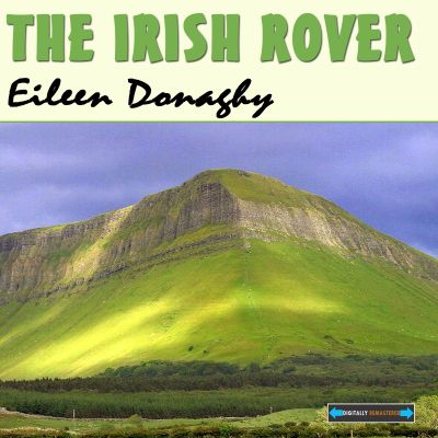 The  Irish Rover