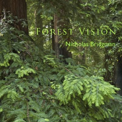 Forest Vision