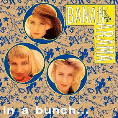 In a Bunch: The CD Singles Box Set (1981-1993)