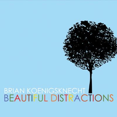 Beautiful Distractions