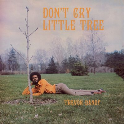 Don't Cry Little Tree