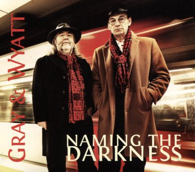 Naming the Darkness