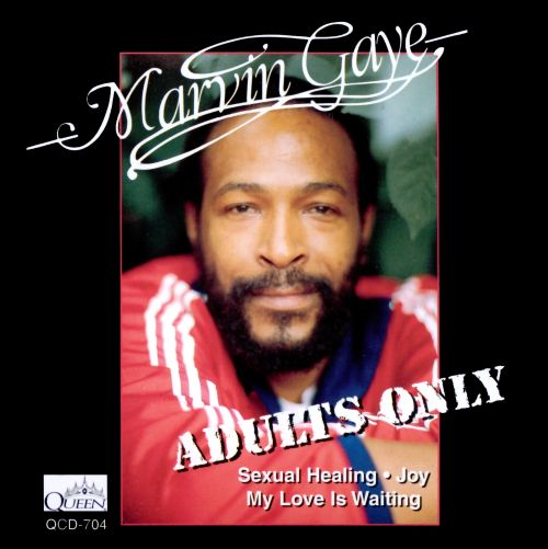 Sexual healing marvin gaye bass cover