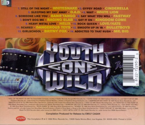 Youth Gone Wild: Heavy Metal Hits of the '80s, Vol. 3