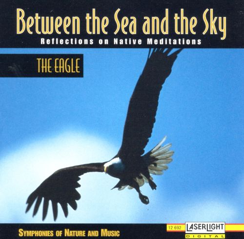 Between the Sea an the Sky: The Eagle