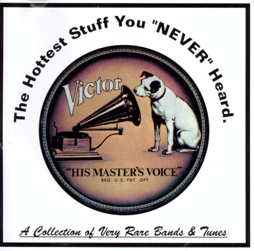 The Hottest Stuff You Never Heard: A Collection of Very Rare Bands and Tunes
