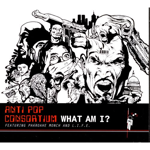 What Am I? [CD/Vinyl Single]