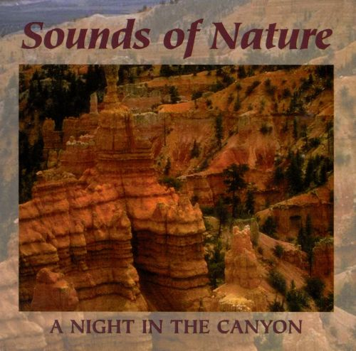 Sounds of Nature: A Night in the Canyon