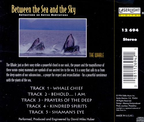 Between the Sea & the Sky: The Whale